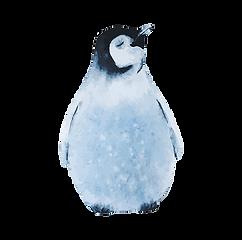 Aquarell-Pinguin 2