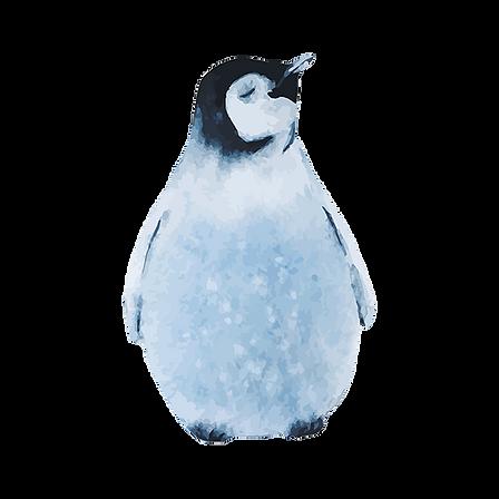 Aguarela Pinguim dois