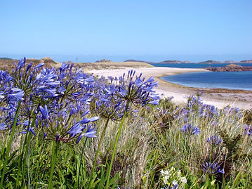 Isles of Scilly Self Catering