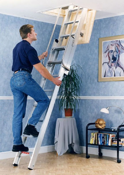 Youngman Delux Loft Ladder