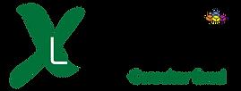 Novo Logo LuizMacro.png