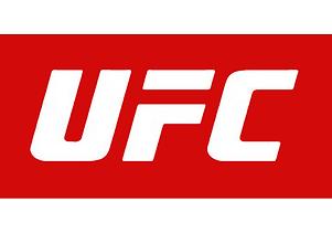 UFC-3.png