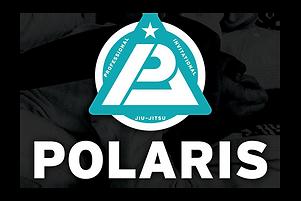 Polaris Logo3.png