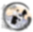 Logo Fjep Aïkido Meyzieu