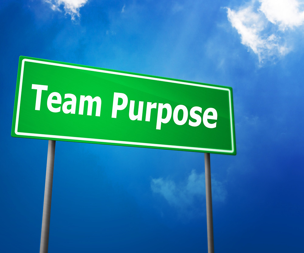 Team Purpose