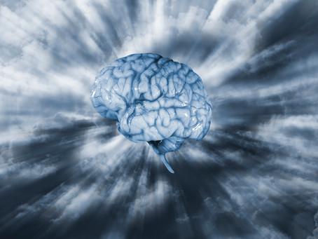 Intelligence and Training