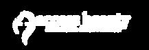 Access Beauty Logo