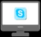 Skype on Screen