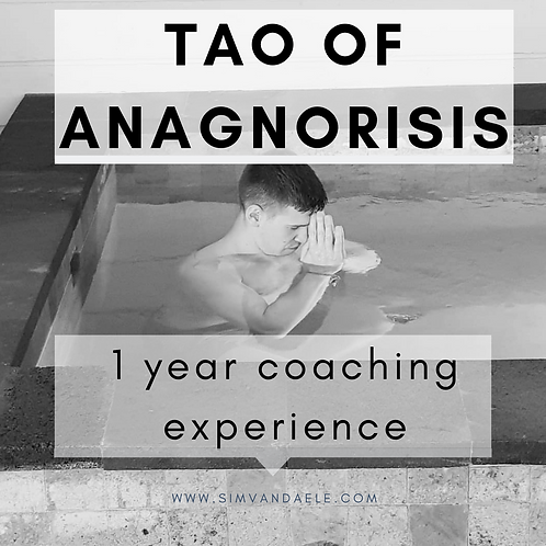 Tao of Anagnorisis : 1 year coaching