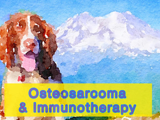 Osteosarcoma and Immunotherapy