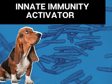 Immunocidin  - Anti-cancer immune system booster
