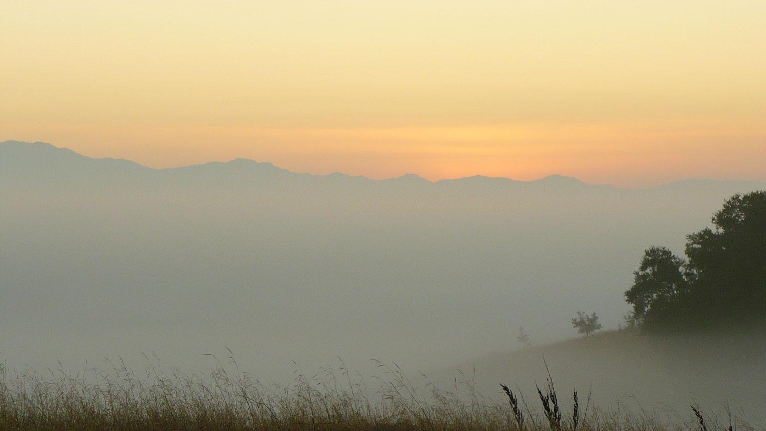 Misty Horizon