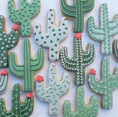 Cute cacti.jpg