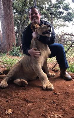 spencer lion