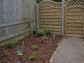 Garden rear 1_1R.JPG