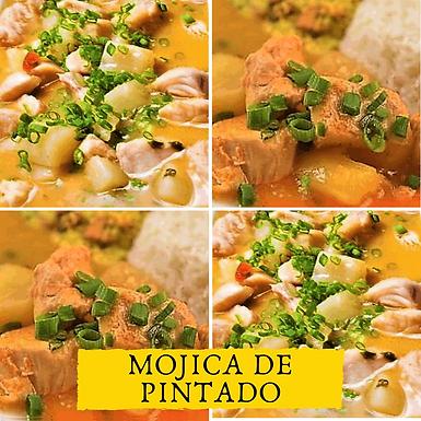 MOJICA DE PINTADO.png