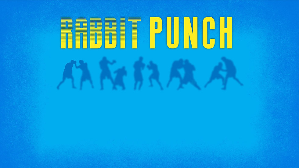 RabbitPunch Header_website.jpg