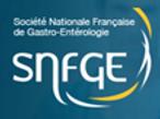 Logo SNGE.png