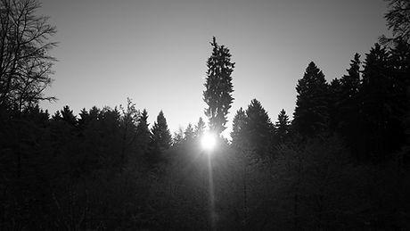 sunrise snow_siedelsbrunn bw.jpg