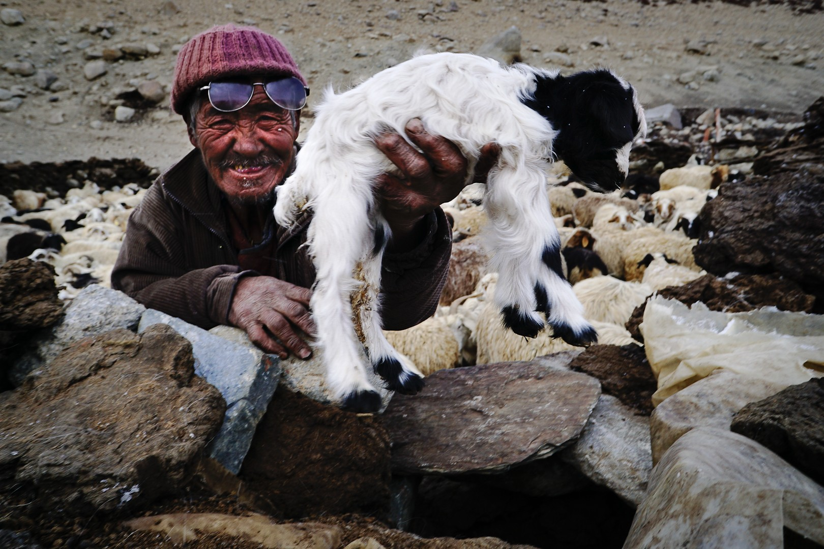 Pasterz i jagnię w Nimaling
