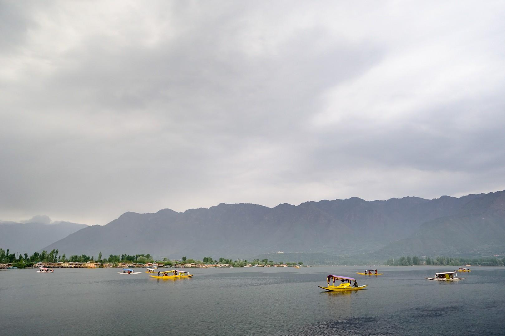 Jezioro Dal. Srinagar.