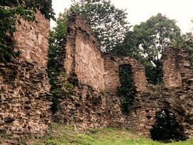 Kam na výlet: Zřícenina hradu Vikštejn