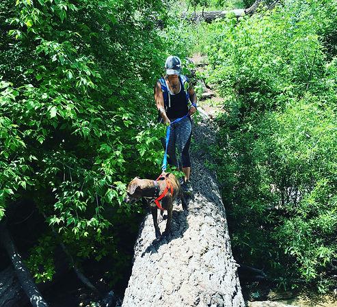 Hiking Sandia Foothills