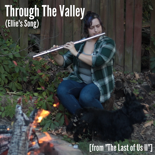 "Through The Valley (Ellie's Song) [from ""The Last of Us 2""]"