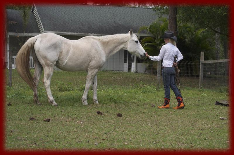 6-orange-w-white-horse
