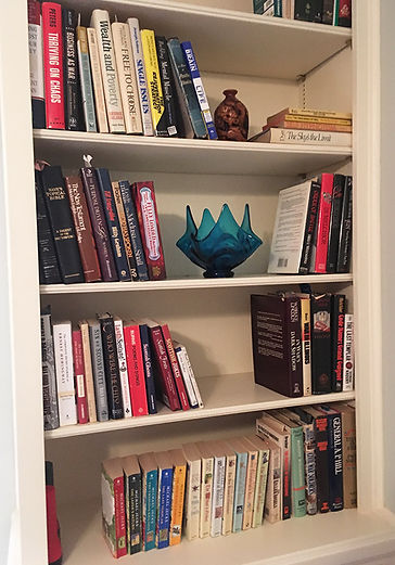 Professiona Organizer Bookshelf Staging After Downsizing