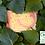 Thumbnail: BULLE DE SÈVE : Savon peau sensible sans huile essentielle - 100g