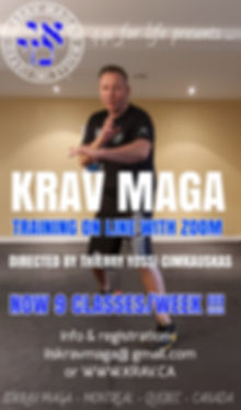 IIS KRAV MAGA ZOOM CLASS