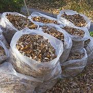 yard-waste-540x540.jpg