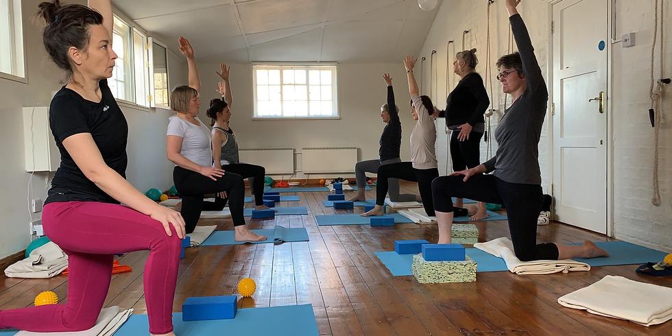 SORRY, FULLY BOOKED! Yoga & Slings/Myofascial Training