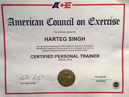 ACE certifications are accredited by the national commision for certifying agencies (NCCA)   Through ACE certification Harteg is a group fitness instructor, ACE health coach and advanced health & fitness specialist with mission to deliver science based health and fitness instruction to people everywhere  primary focus is strength and conditioning.