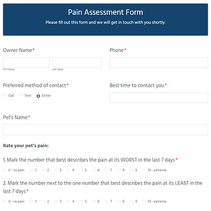 Pain Assessment Form.PNG