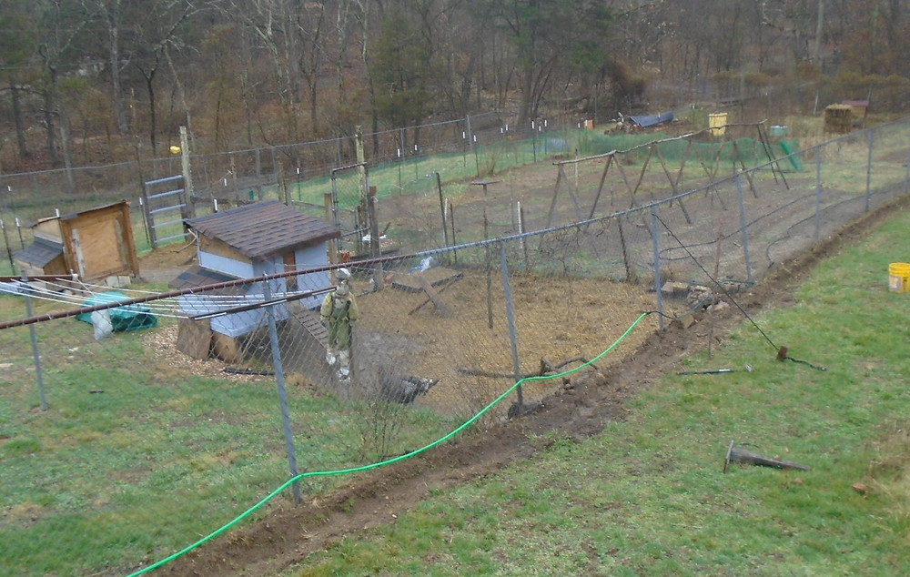 Two coops, nine different beds, beehives, work in progress.. everything we do is here.