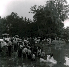 Baptism at Gee's Bend