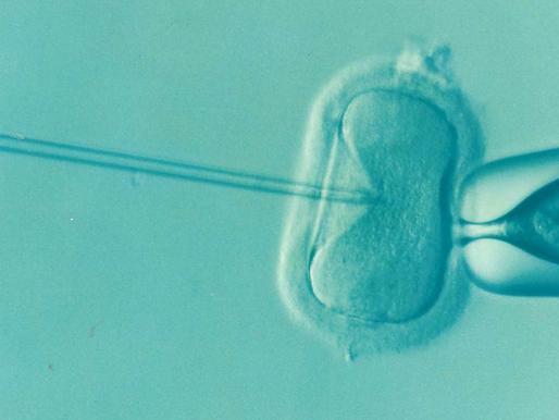 Preparing for fertility treatment