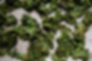 kalecrisps.jpg