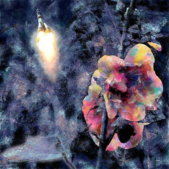 «Этот хрупкий цветок с душой астронавта»