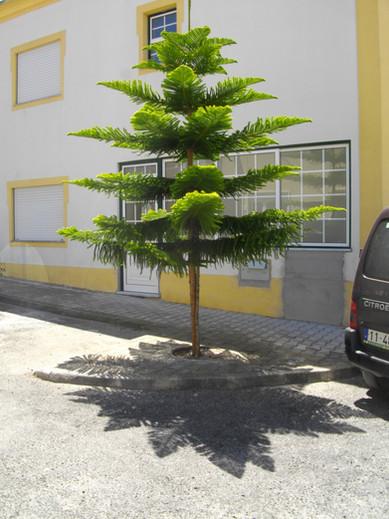 DOWNTOWN VILLAGE portugal