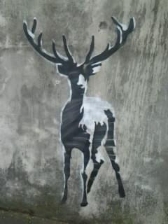 graff deer tlse