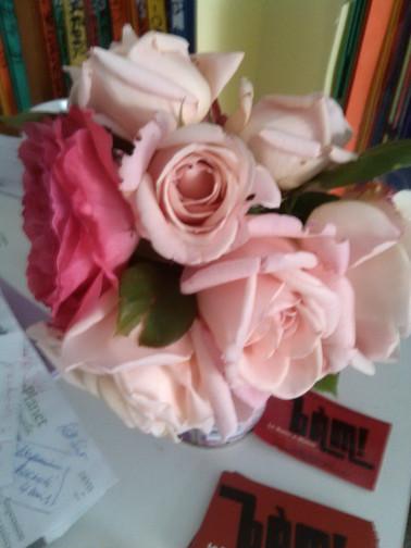 Roses 2015