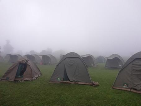 Top 10 Best Camping Safari Tips & Tricks