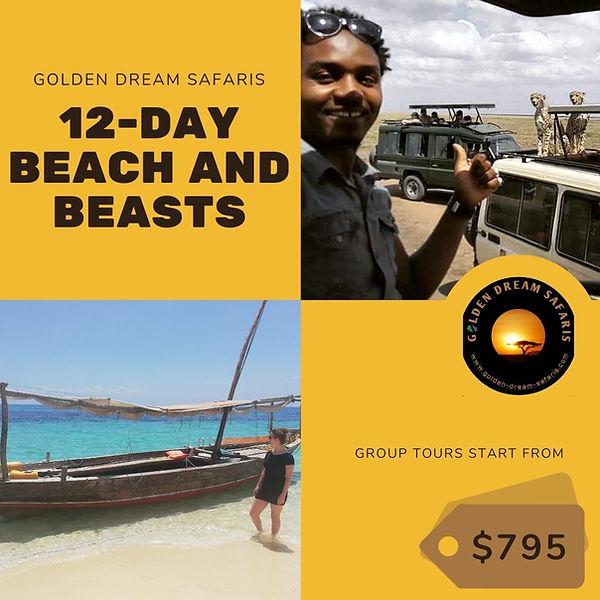 Beach and beasts.jpg