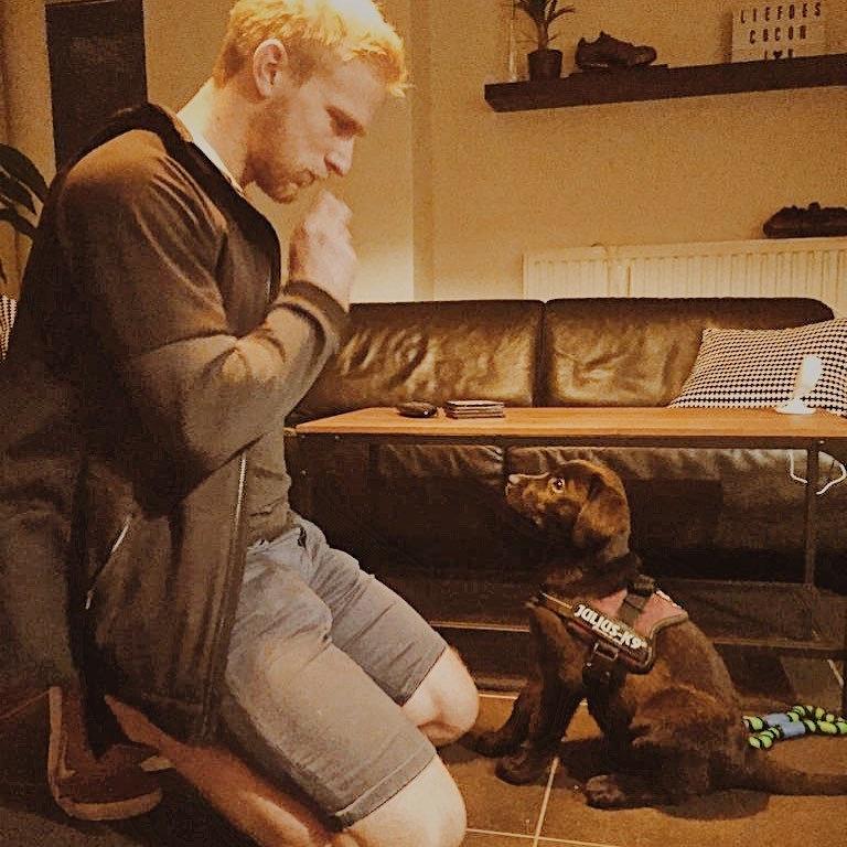 Online puppytraining via videocall