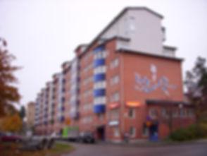 Rinkeby_2009.jpg