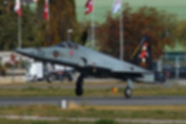 F5 Tiger II Swiss Air Force