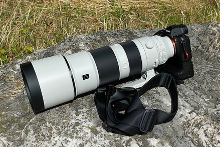 Sony A7R3 (A) avec Sony FE 200-600mm f/5-6.3 G OSS